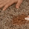 6 Quick Commercial Carpet Stain Removal Tips