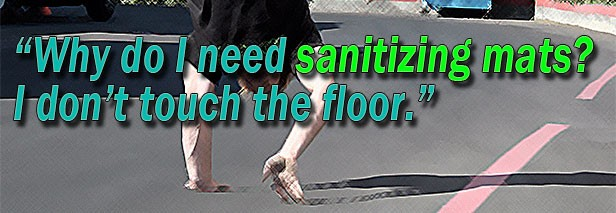 Why do I need sanitizing mats?  I don't touch the floor.